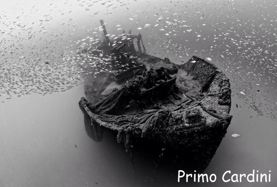 Relitto equa - Equa wreck (foto P. Cardini)